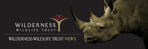 trust-news-banner